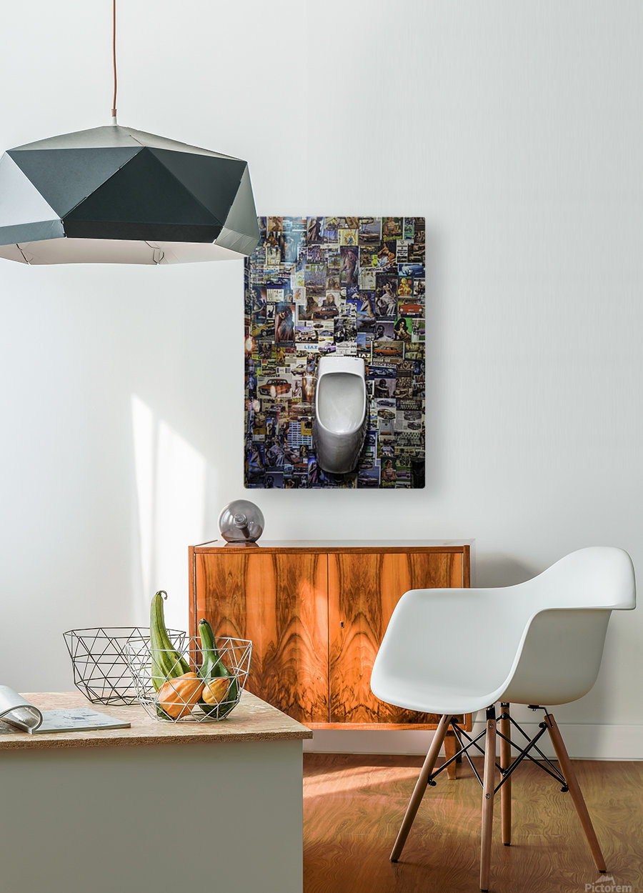 The Bowl  HD Metal print with Floating Frame on Back