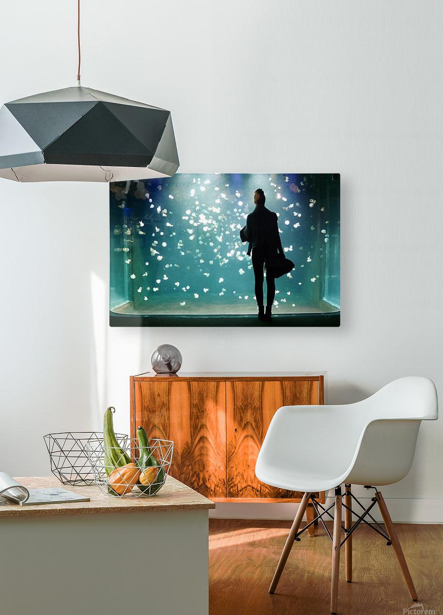 Aquarium  HD Metal print with Floating Frame on Back