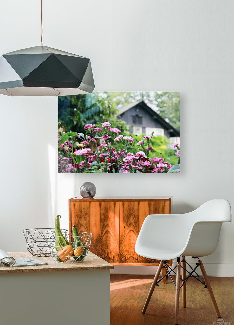 Cottage  HD Metal print with Floating Frame on Back