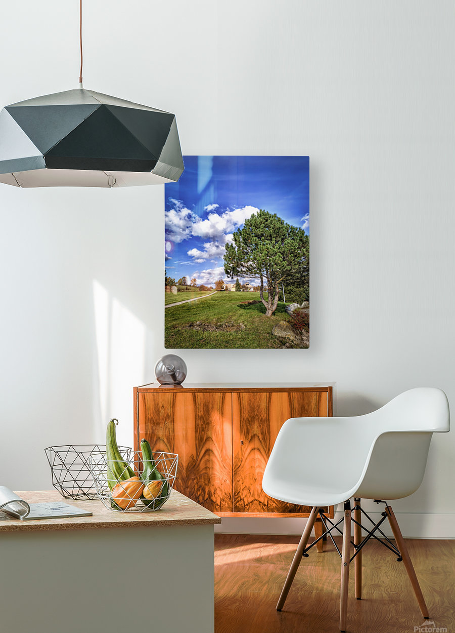 Tree and blue sky with clouds  HD Metal print with Floating Frame on Back