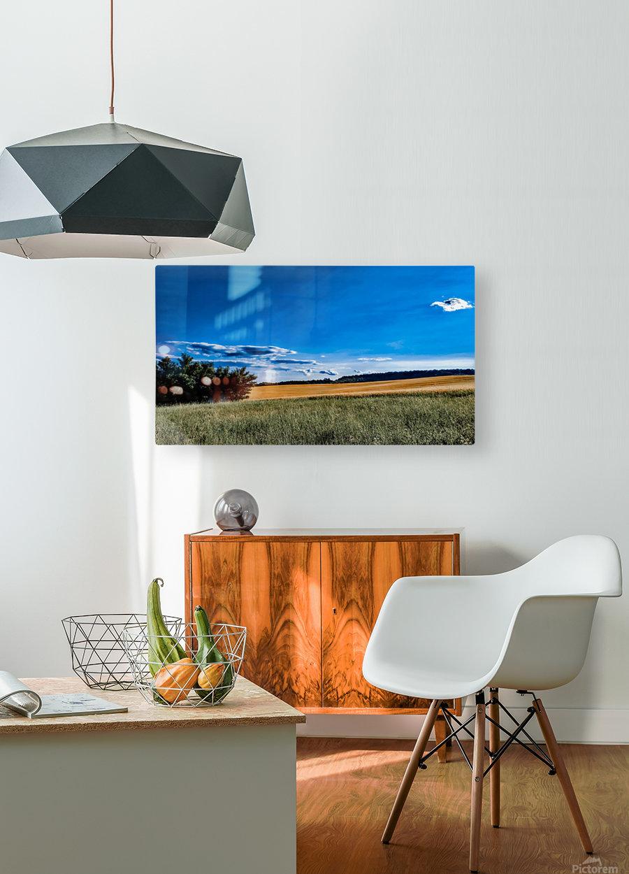Summer landscape  HD Metal print with Floating Frame on Back