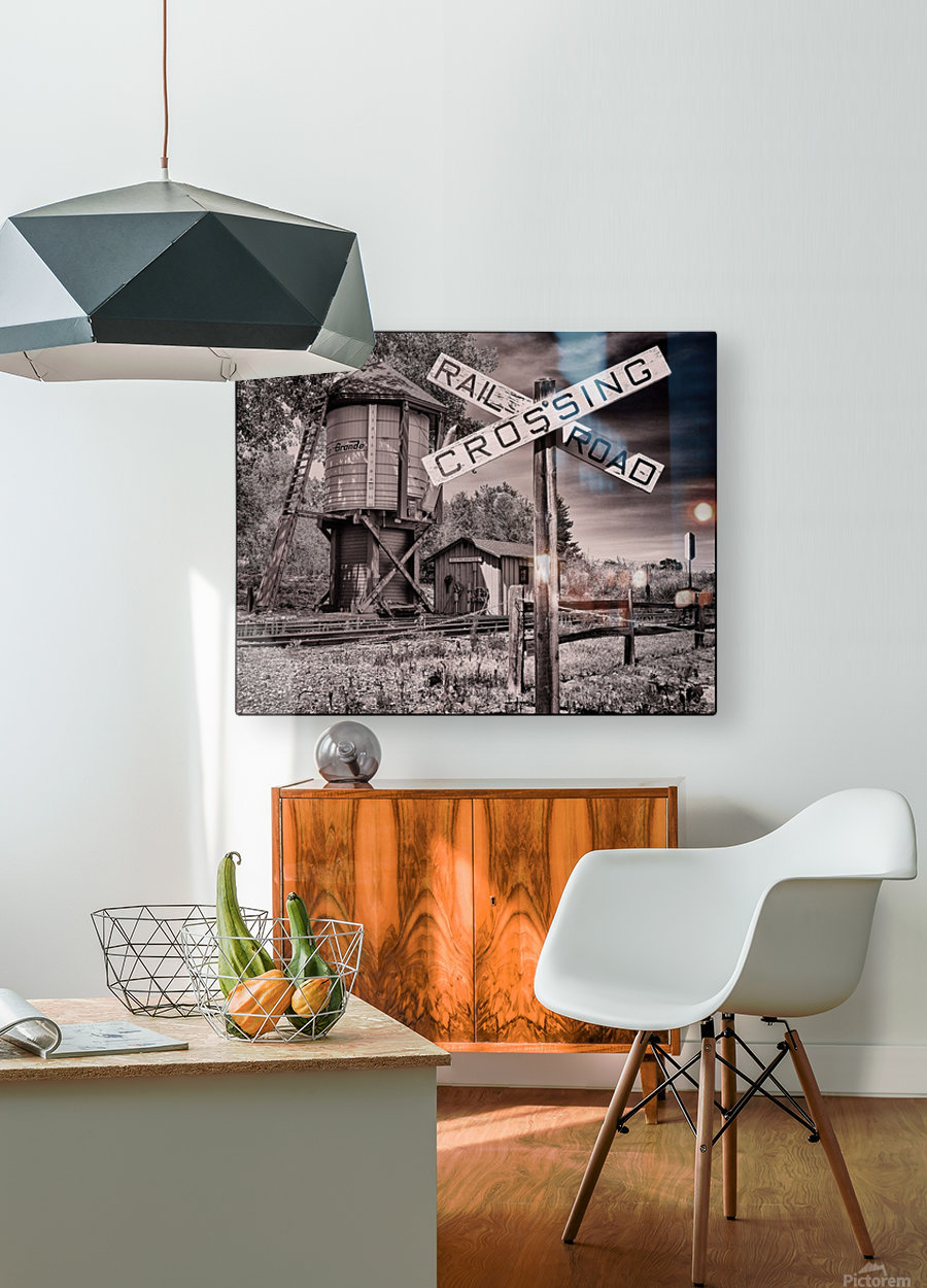 The train station  HD Metal print with Floating Frame on Back