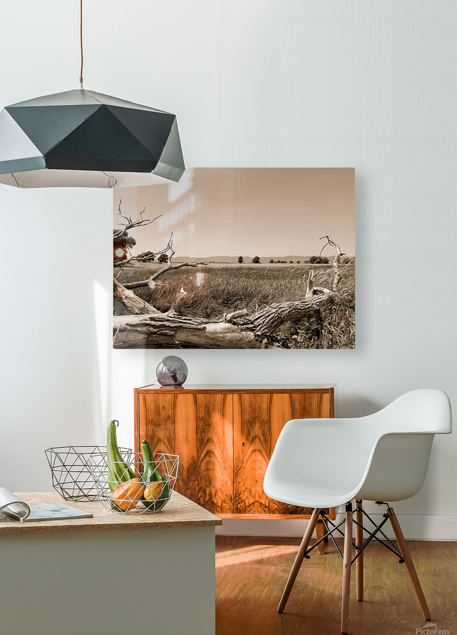 Isle aux Grues  HD Metal print with Floating Frame on Back