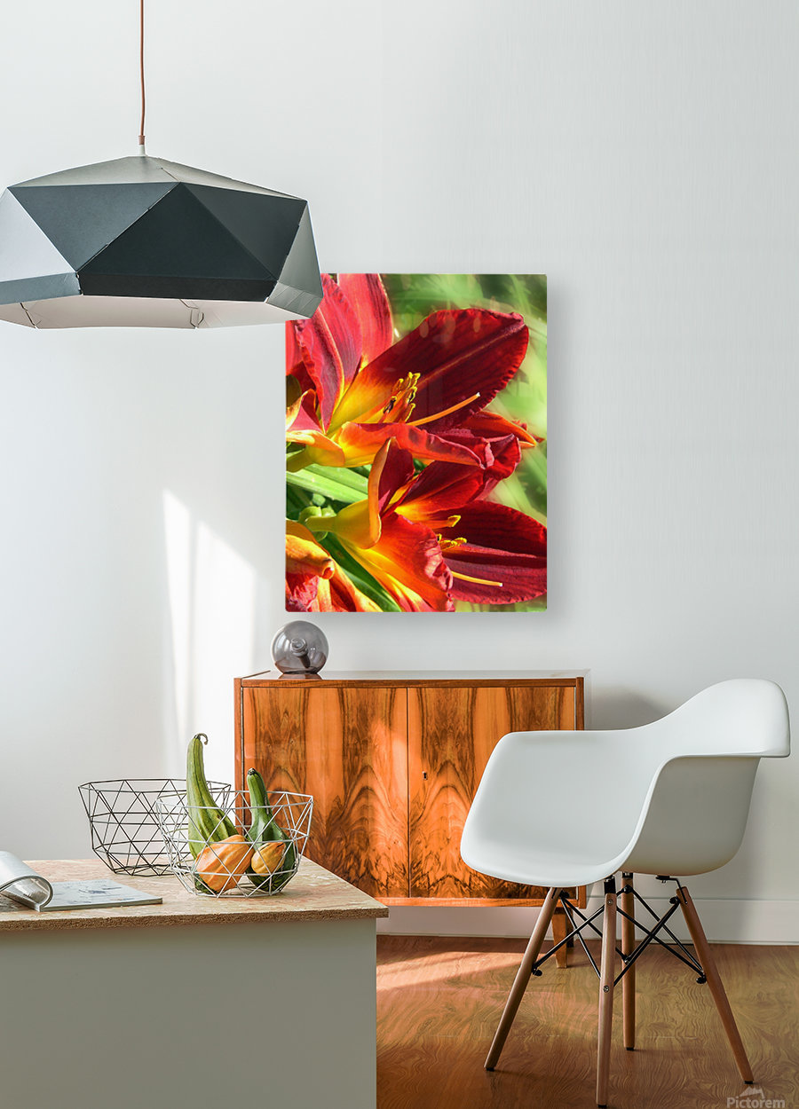 Firecrackers  HD Metal print with Floating Frame on Back
