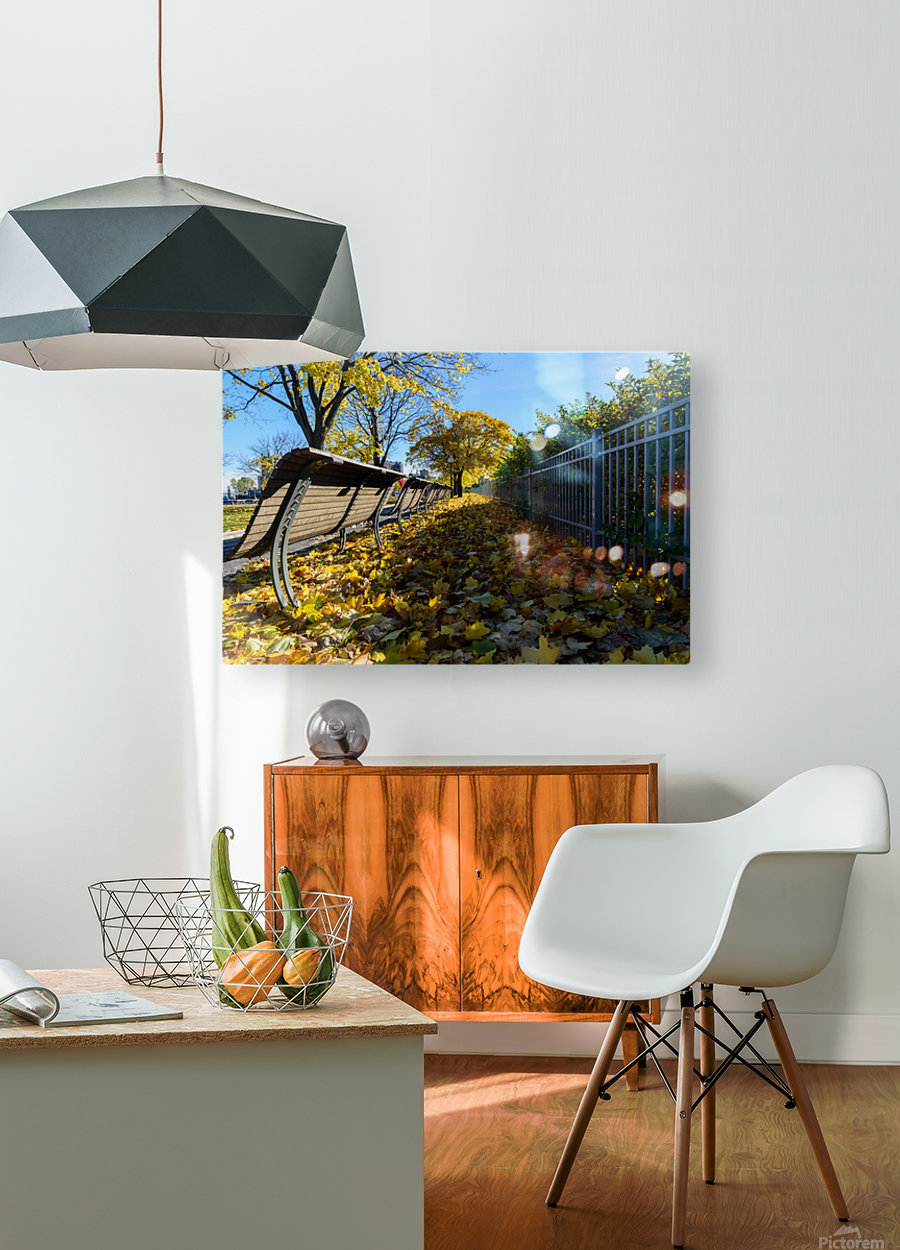 Autumn leaves in the park  HD Metal print with Floating Frame on Back
