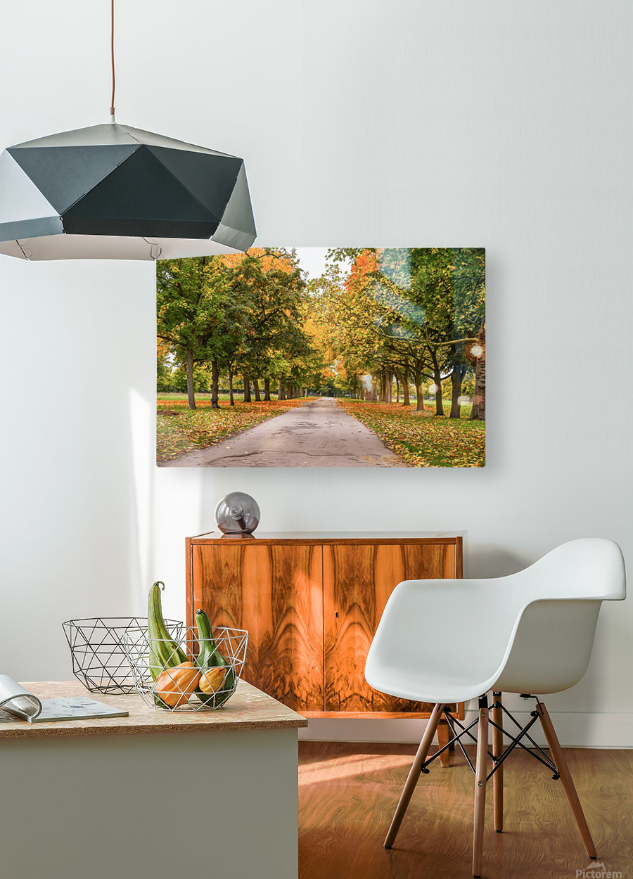 Autumn colours  HD Metal print with Floating Frame on Back