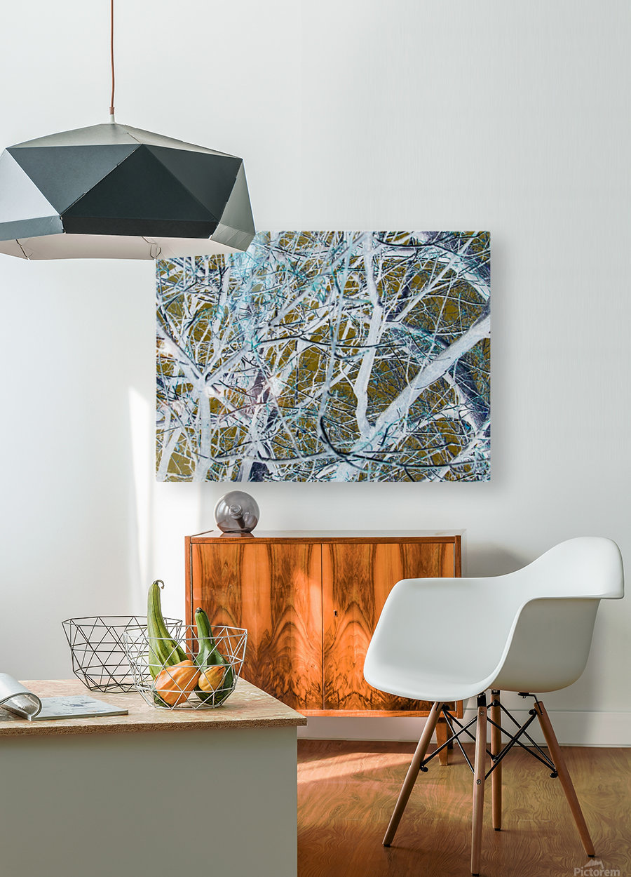 Funky Branches  HD Metal print with Floating Frame on Back