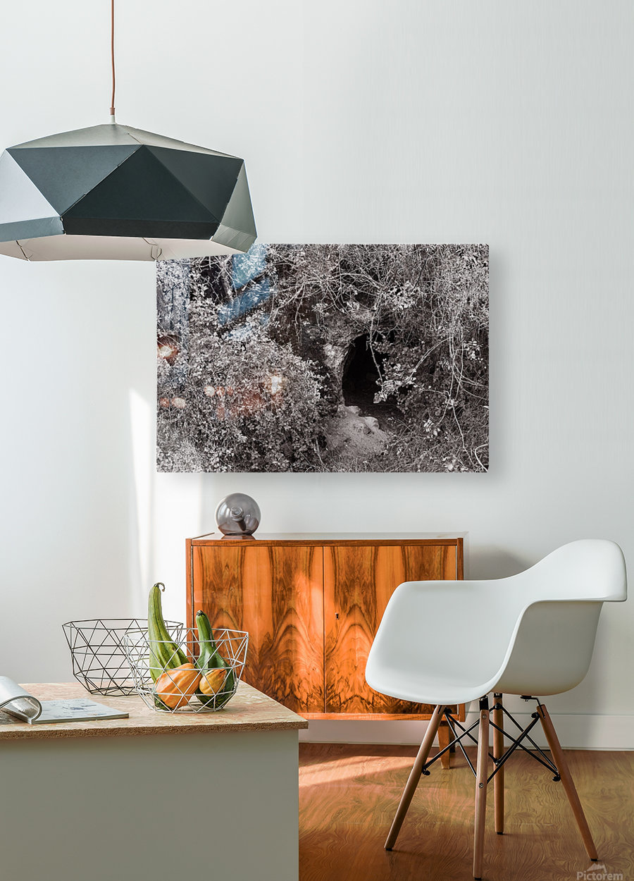 Cave entrance  HD Metal print with Floating Frame on Back