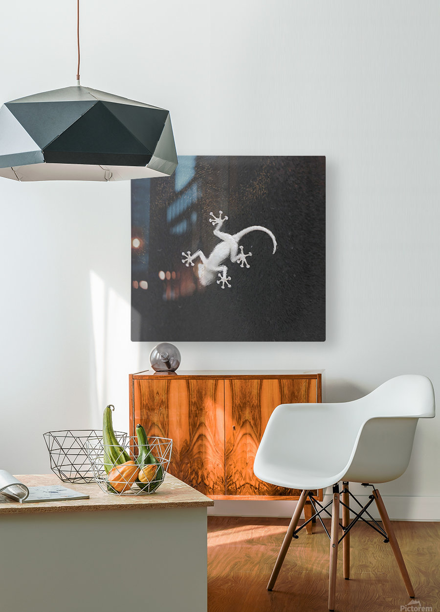 The night hunter  HD Metal print with Floating Frame on Back