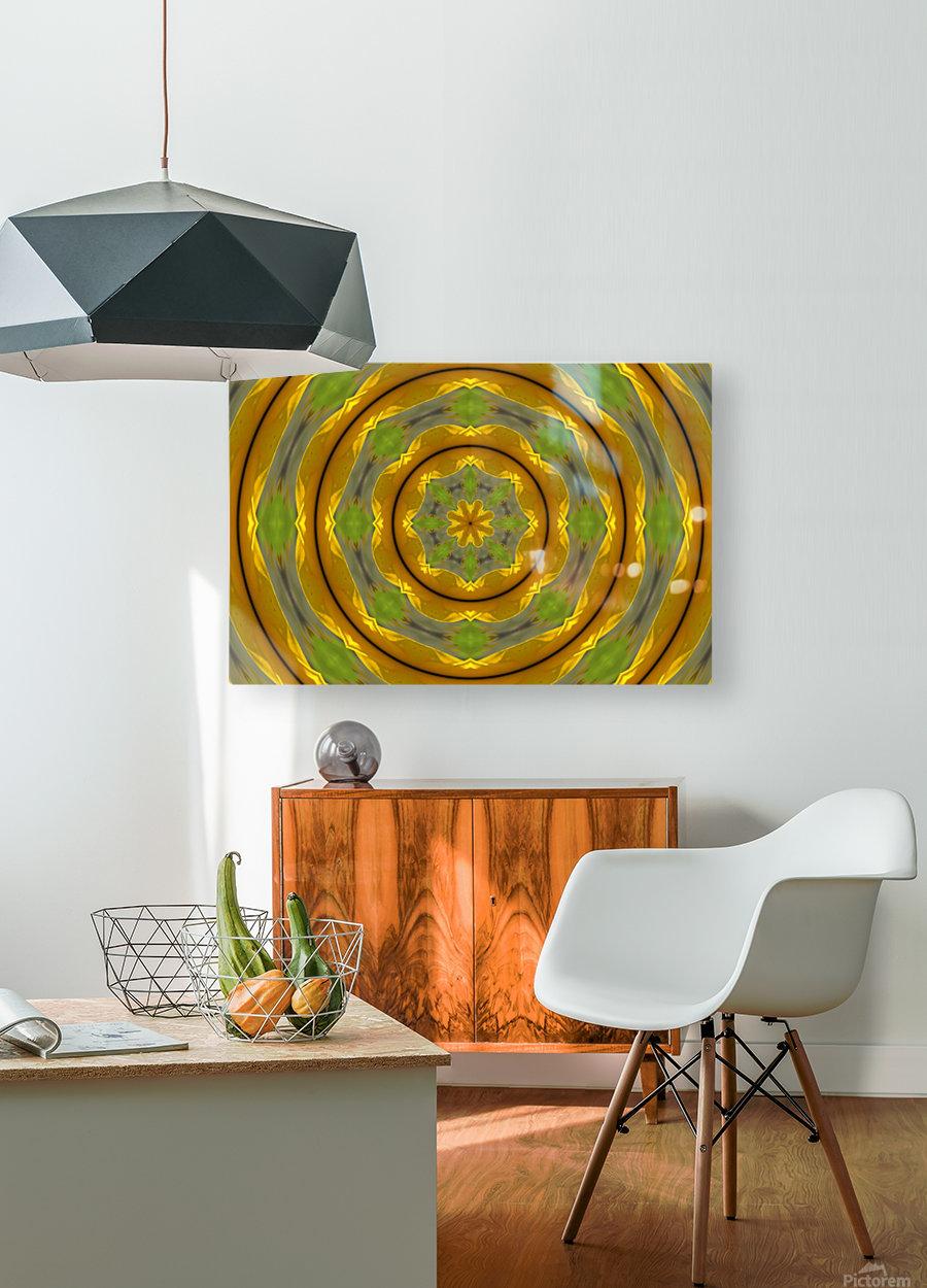 Sunflower G K1  HD Metal print with Floating Frame on Back