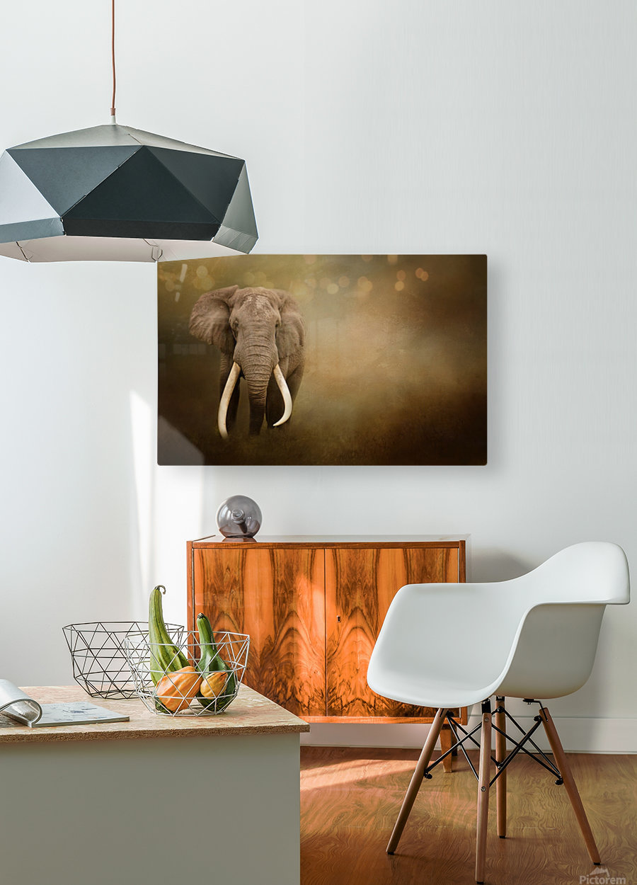 Out of the Shadows  HD Metal print with Floating Frame on Back