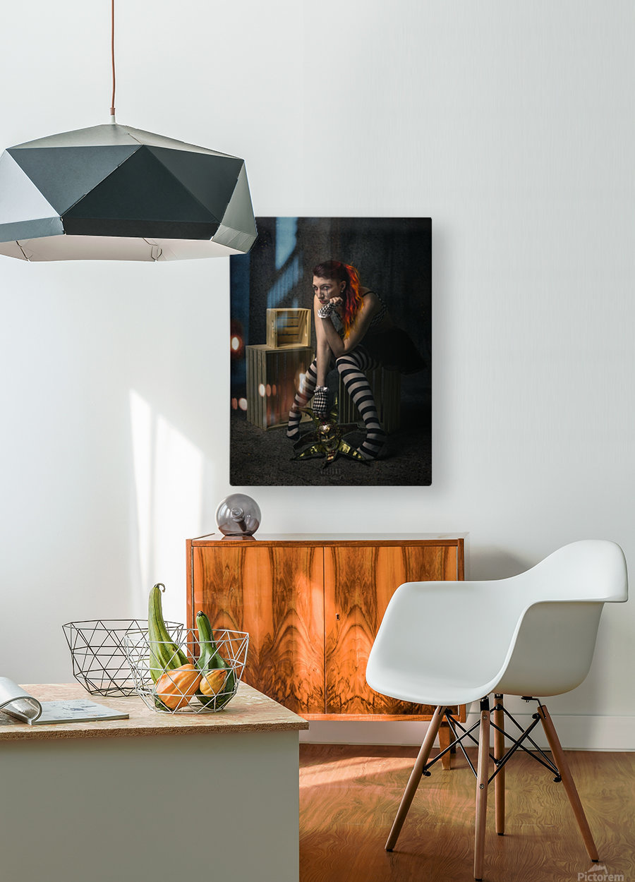 Le long temps  HD Metal print with Floating Frame on Back