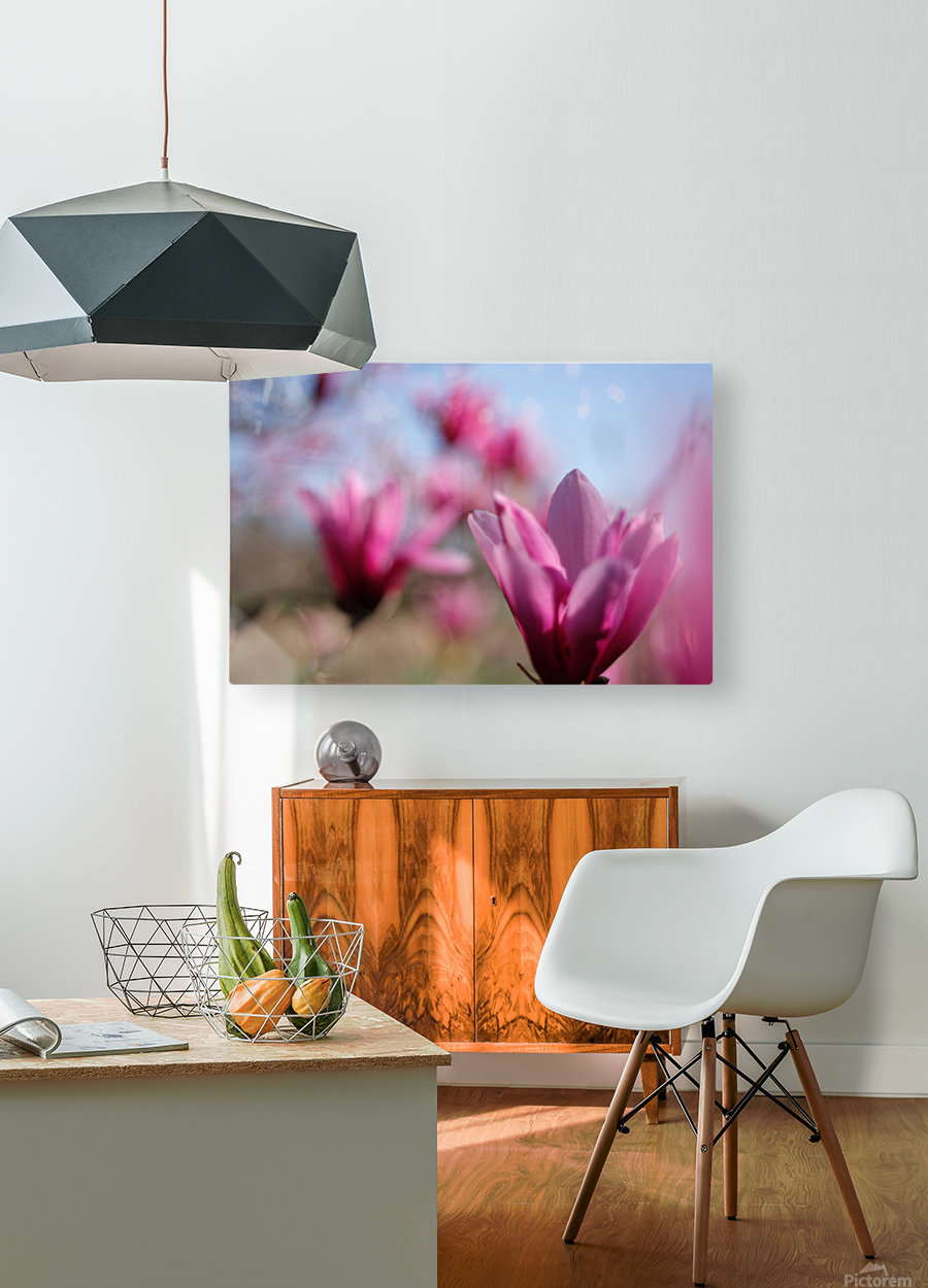 Line of Magnolias  HD Metal print with Floating Frame on Back