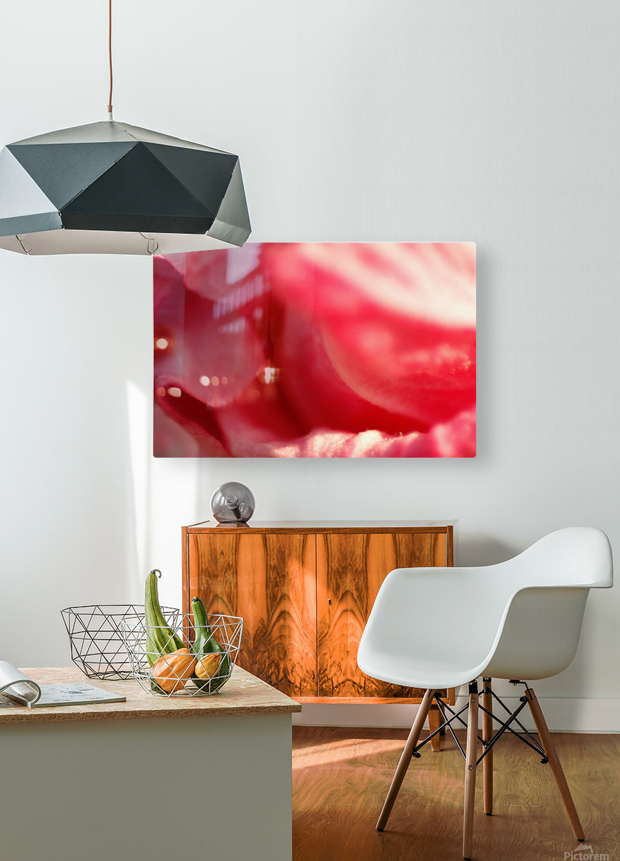 Pink Folds  HD Metal print with Floating Frame on Back