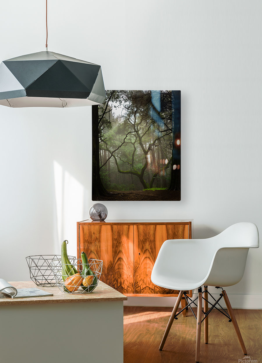 Clearing in the Woods  HD Metal print with Floating Frame on Back