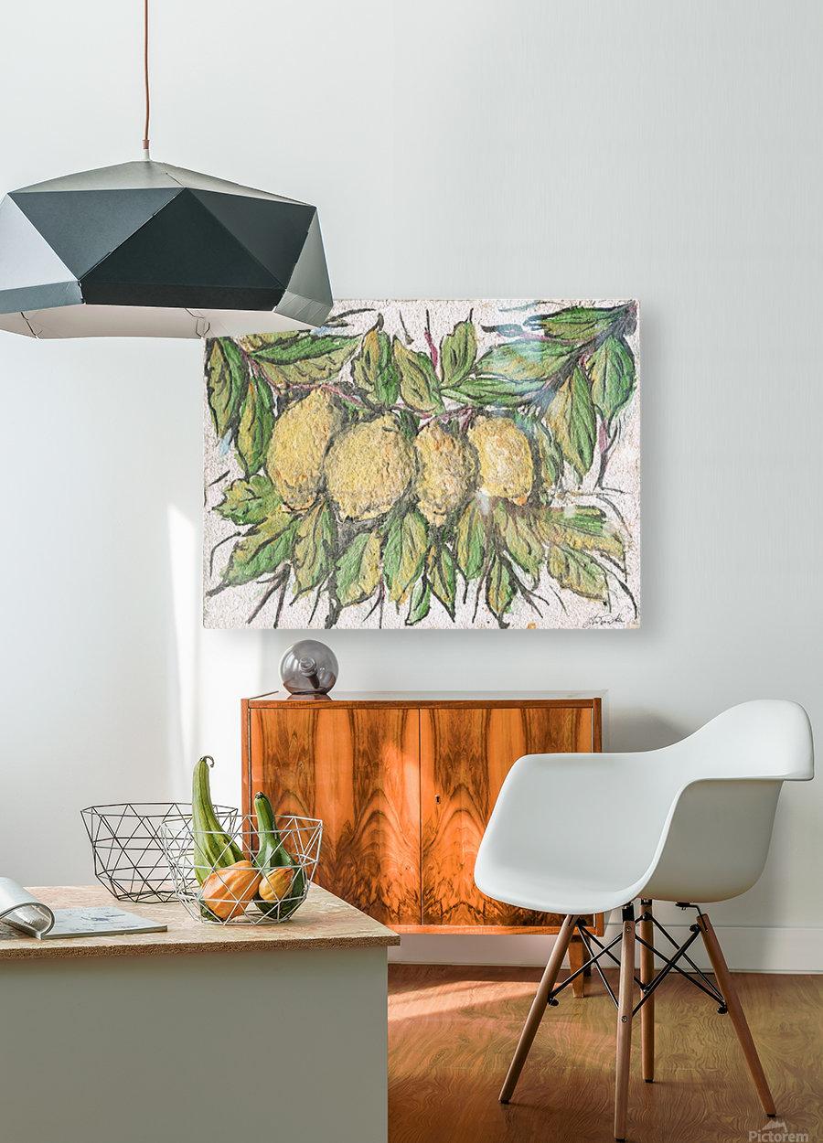 Sorrento_ fresco  HD Metal print with Floating Frame on Back