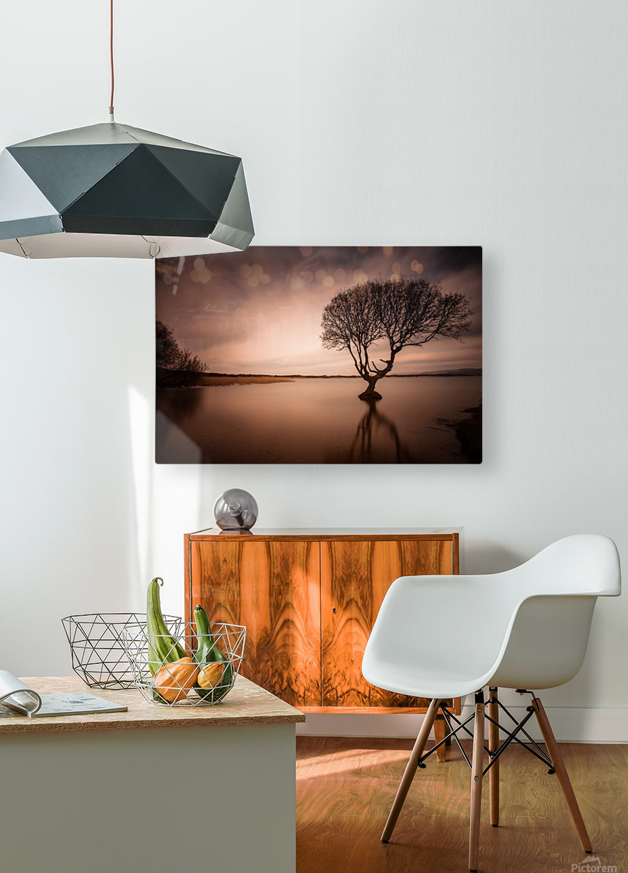 The Kenfig Tree  HD Metal print with Floating Frame on Back