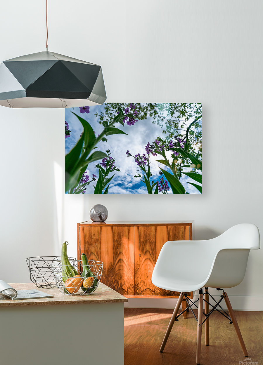 Skyward 2  HD Metal print with Floating Frame on Back