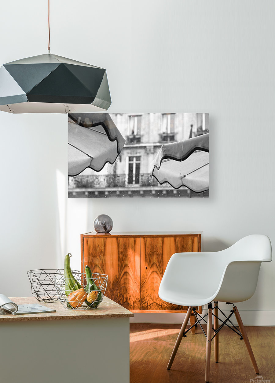 Refuge from the Rain  HD Metal print with Floating Frame on Back