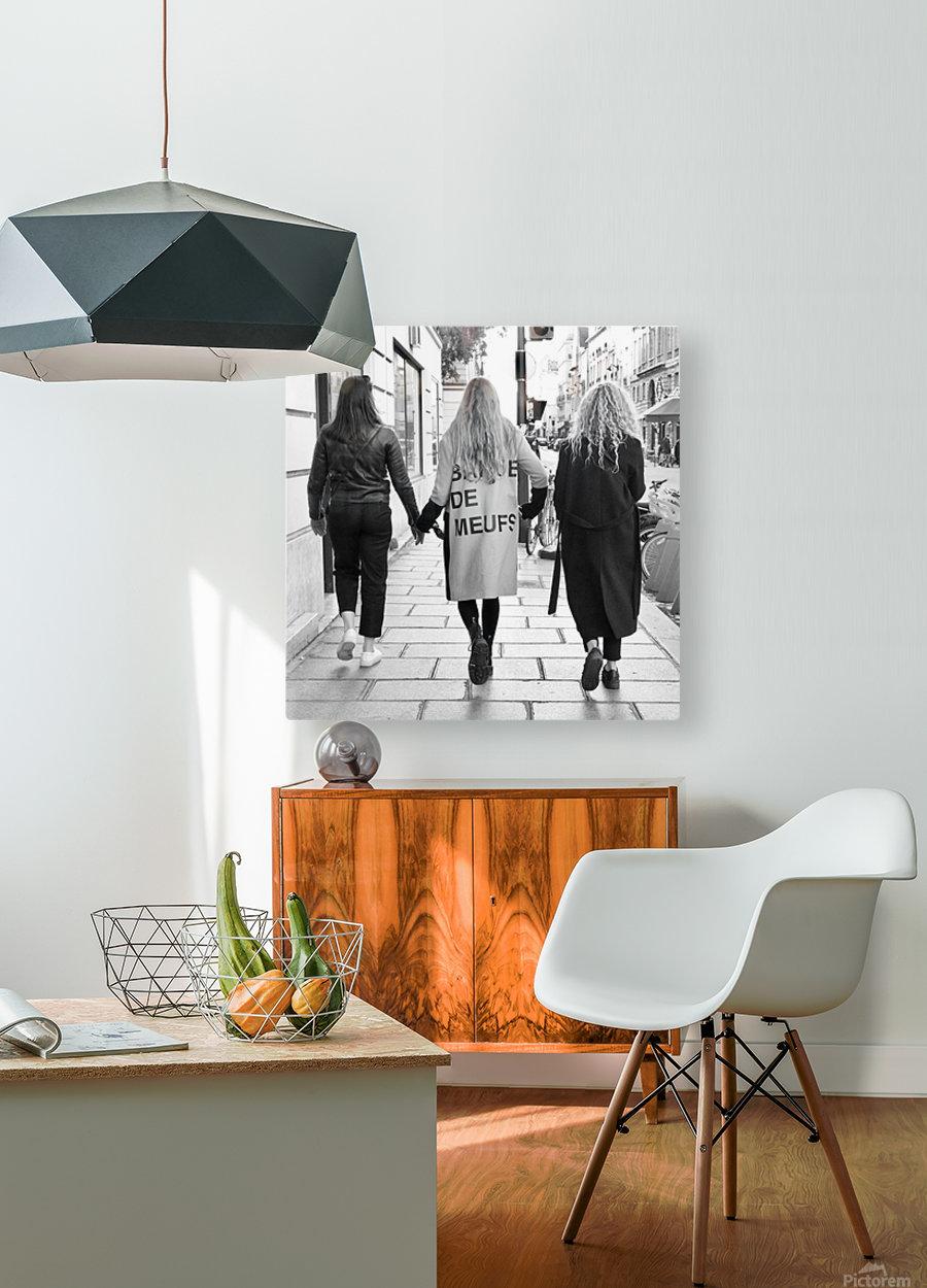 Bande de Meufs  HD Metal print with Floating Frame on Back