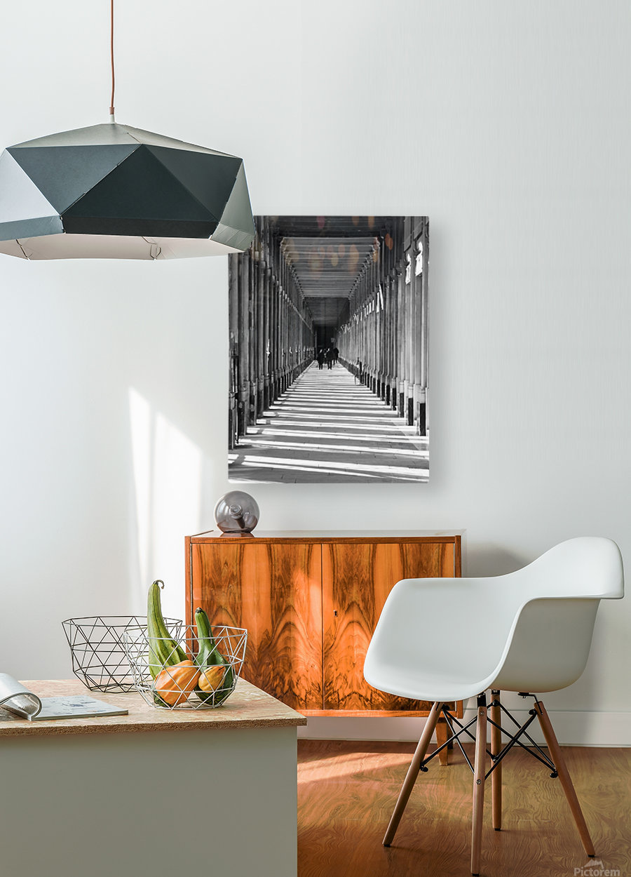 Palais Royale  HD Metal print with Floating Frame on Back