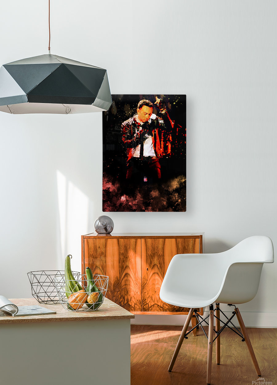 12  HD Metal print with Floating Frame on Back