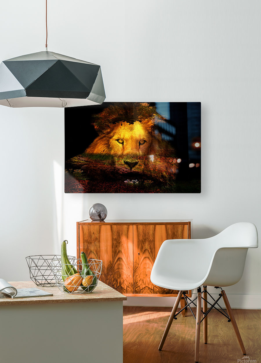 The Lion Watches  HD Metal print with Floating Frame on Back