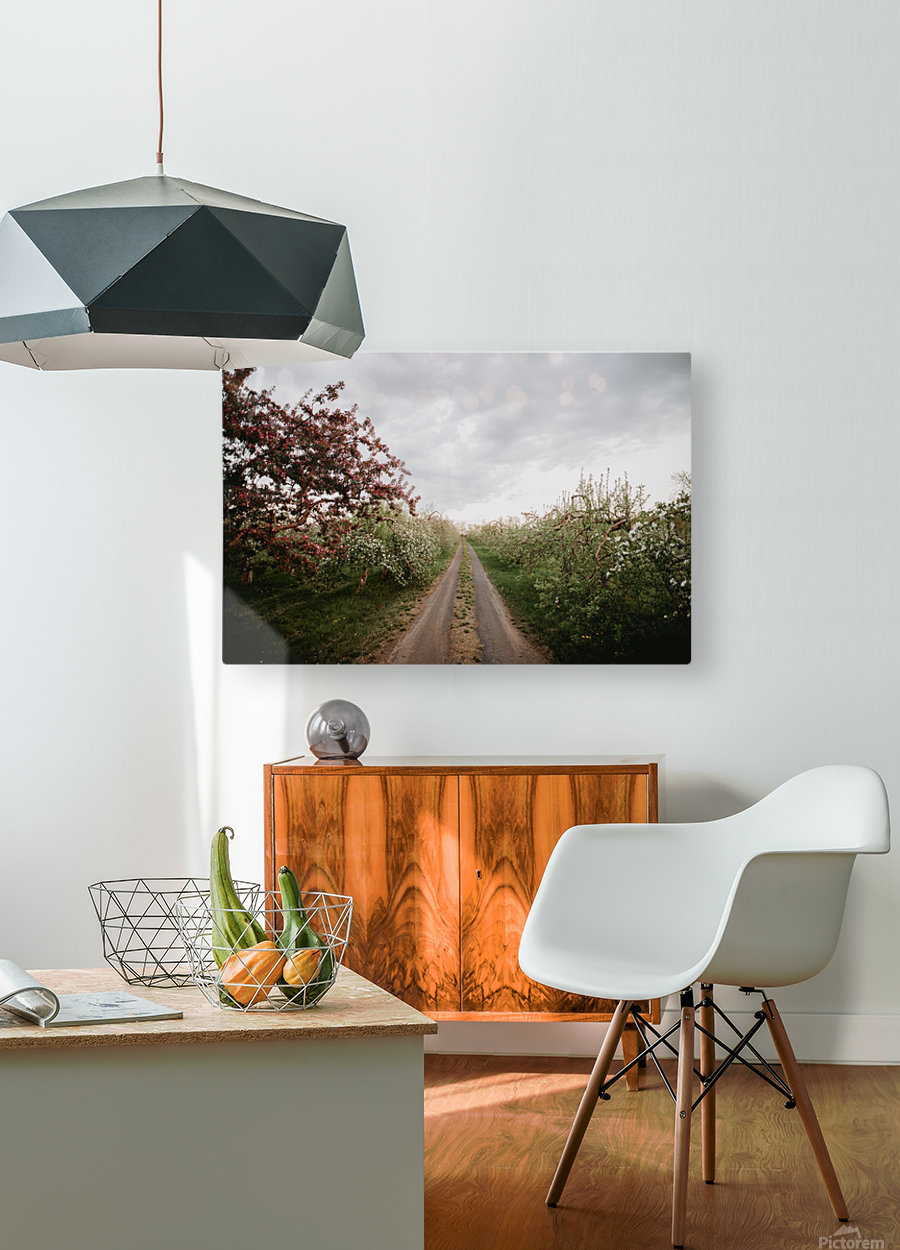 Chemin fleuri  Impression métal HD avec cadre flottant sur le dos