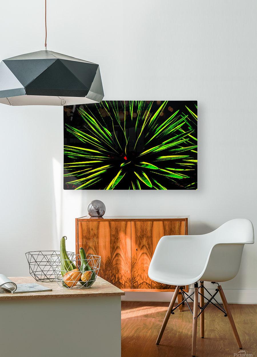 Atchoo  HD Metal print with Floating Frame on Back