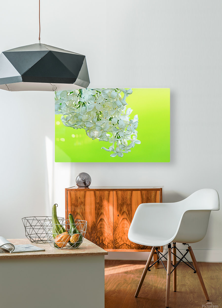 Cool White Lilac On Lemon Lime  HD Metal print with Floating Frame on Back