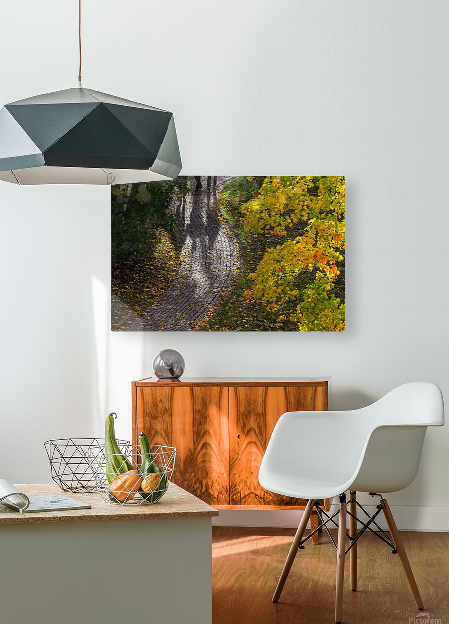 AUTUMN 02  HD Metal print with Floating Frame on Back
