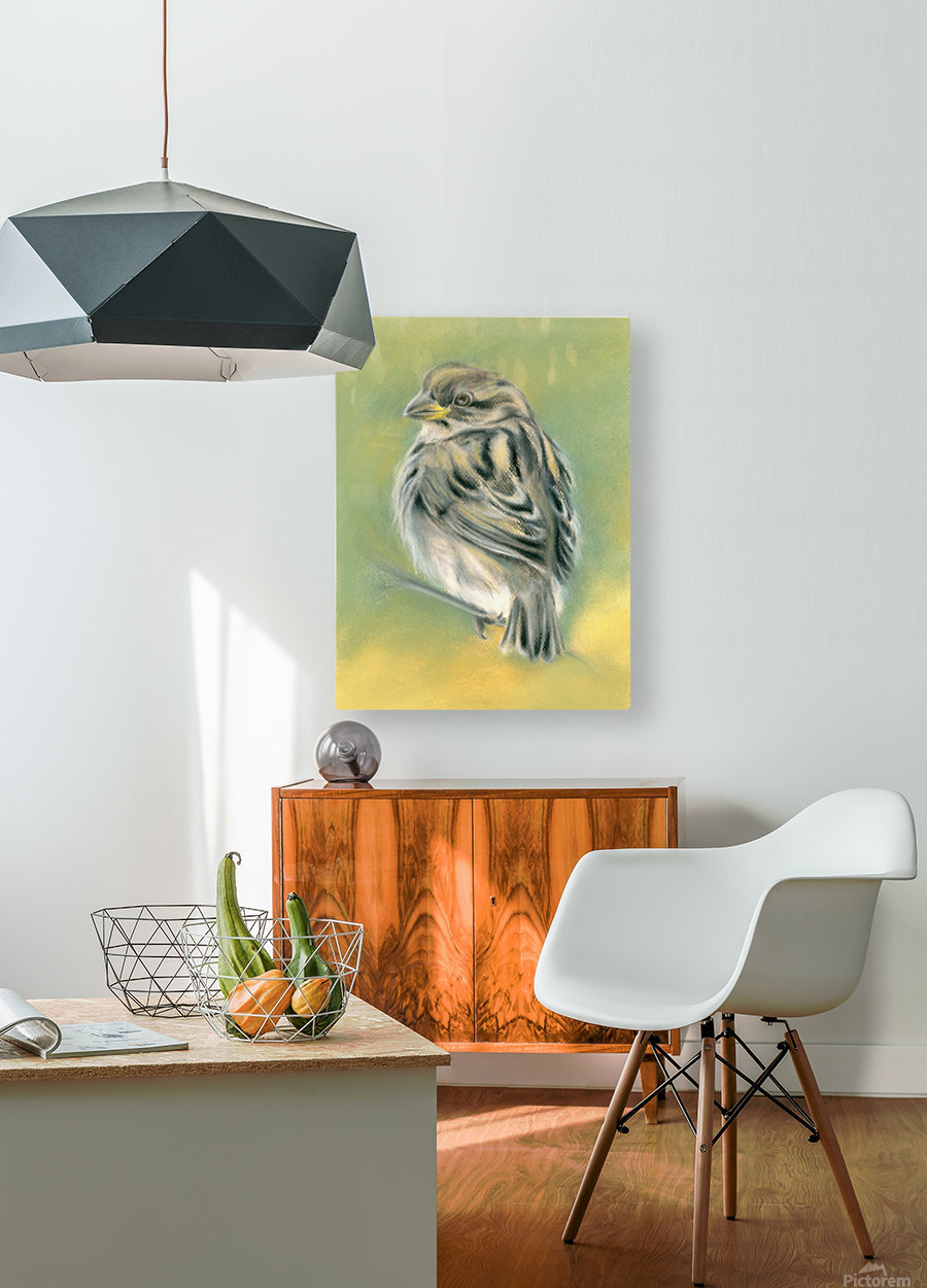 Sunny Sparrow  HD Metal print with Floating Frame on Back