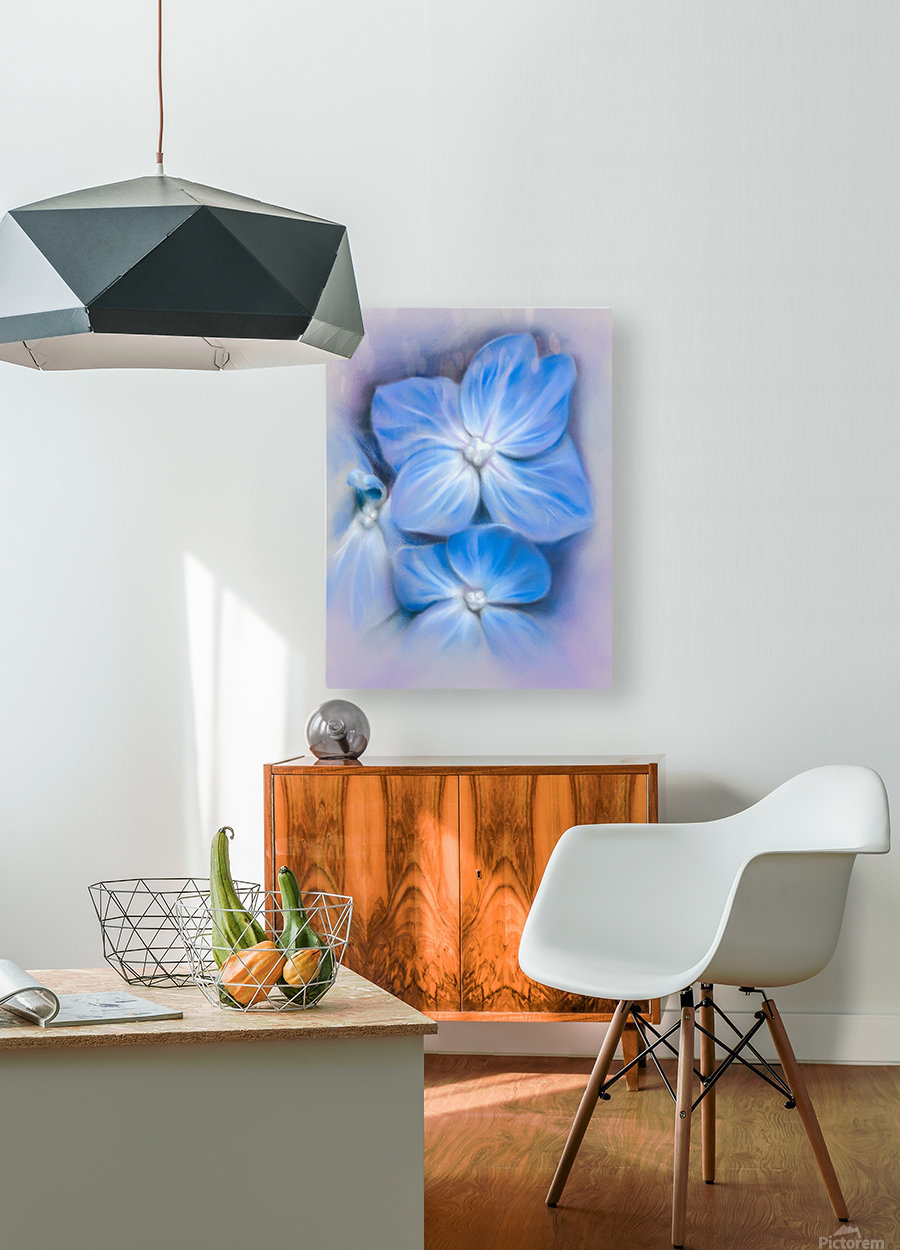 Blue Hydrangea Blossoms  HD Metal print with Floating Frame on Back