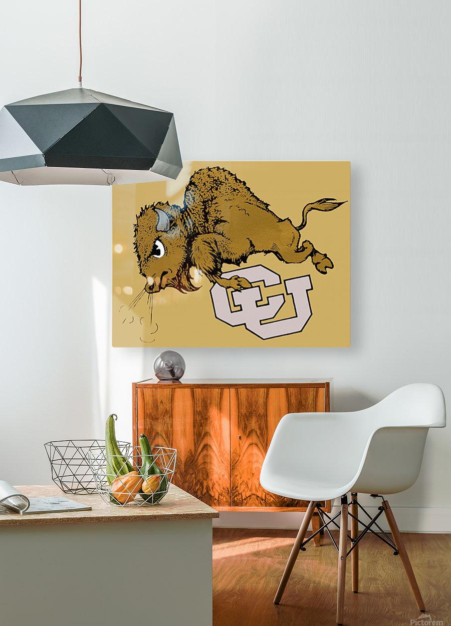 vintage cu colorado buffaloes art  HD Metal print with Floating Frame on Back