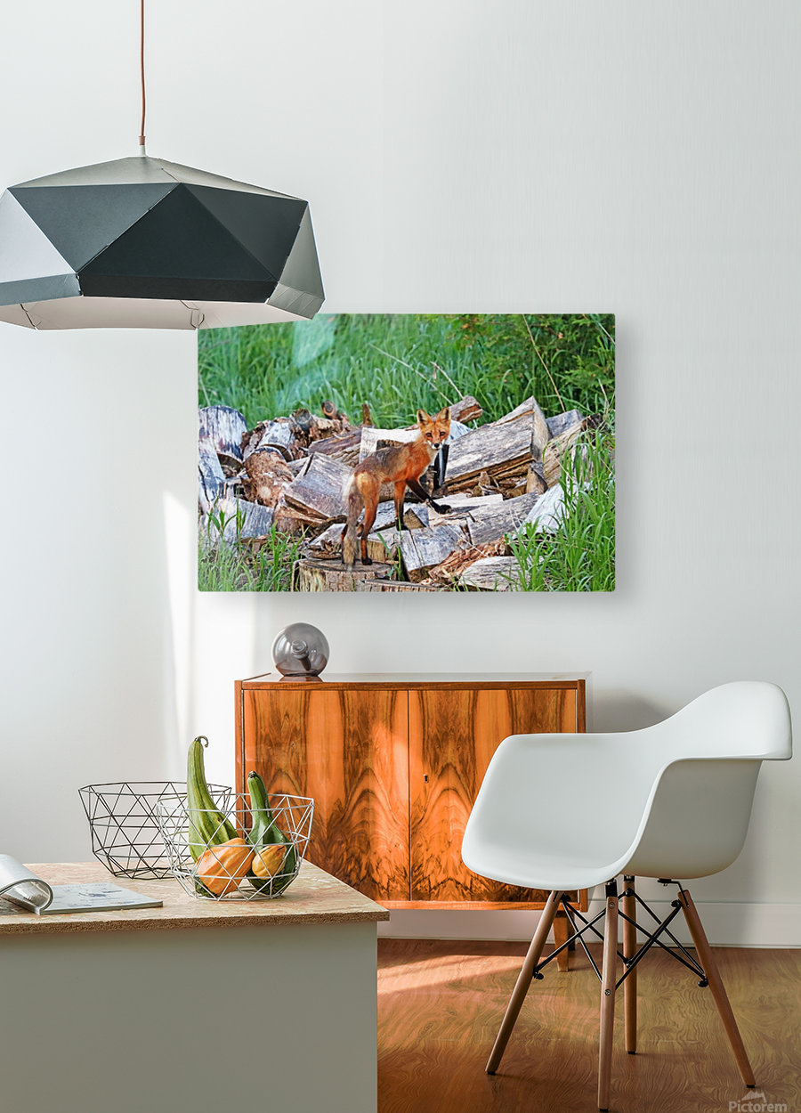 Time To Go Hunting  HD Metal print with Floating Frame on Back
