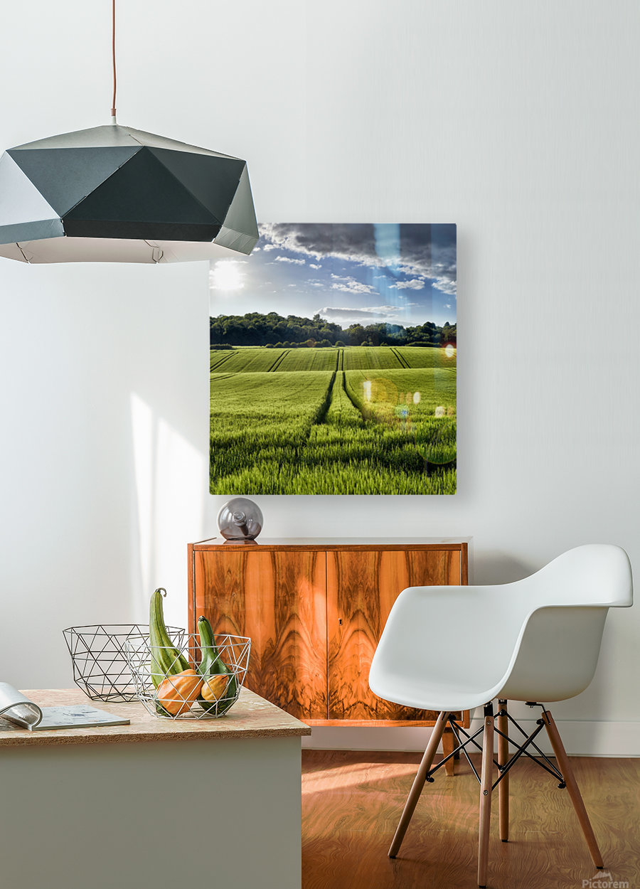 Wheat Fields  HD Metal print with Floating Frame on Back
