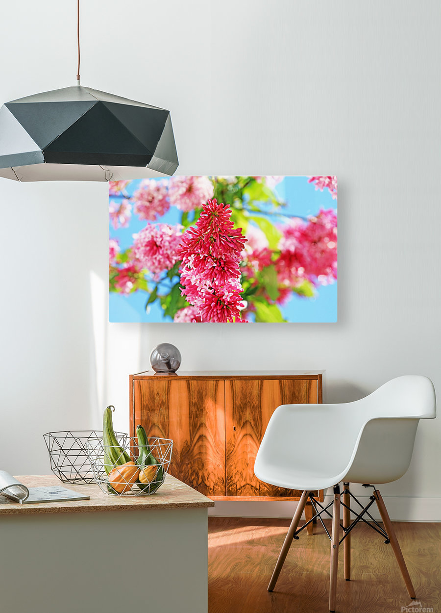 Sweet Side Of Red  HD Metal print with Floating Frame on Back