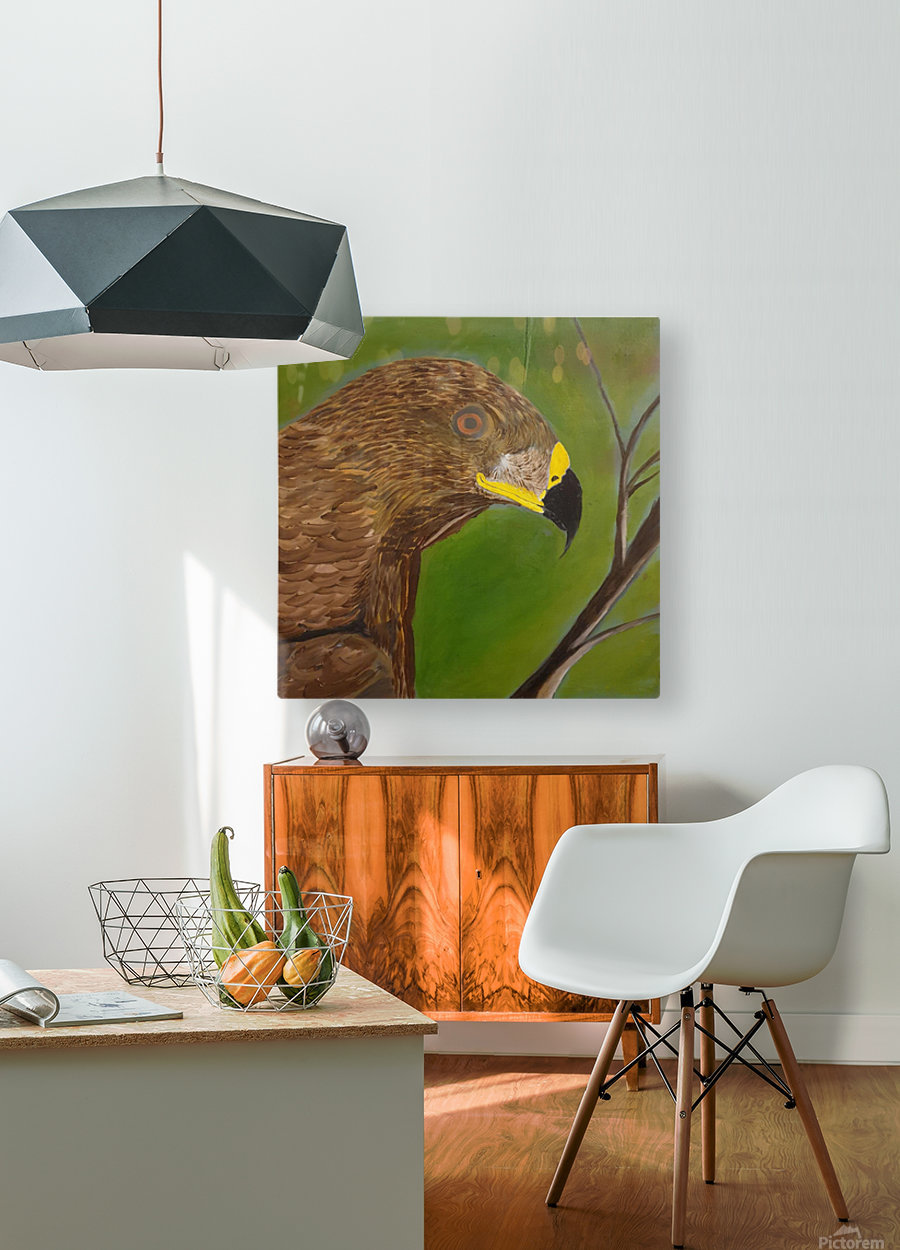 Bird of Prey  HD Metal print with Floating Frame on Back