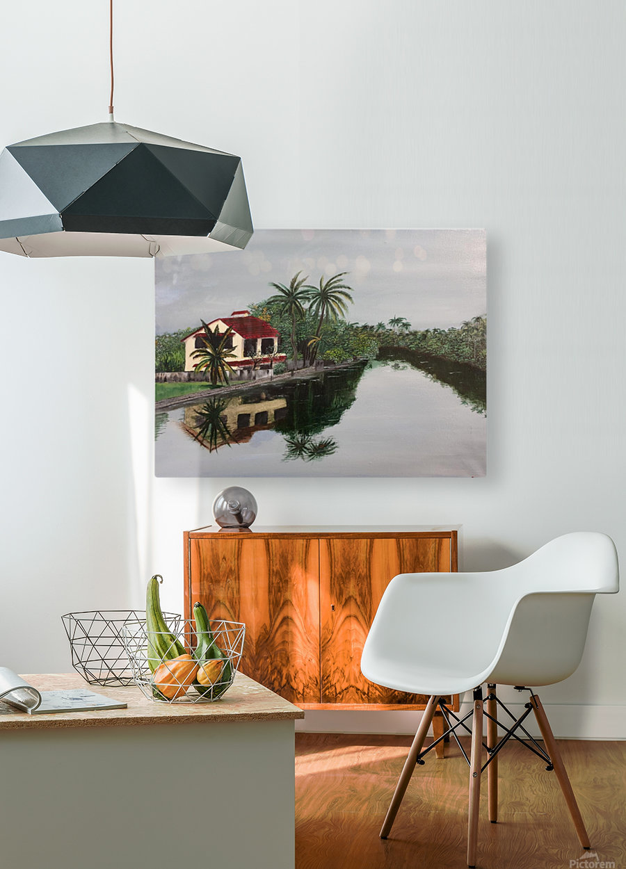 Cochin house  HD Metal print with Floating Frame on Back