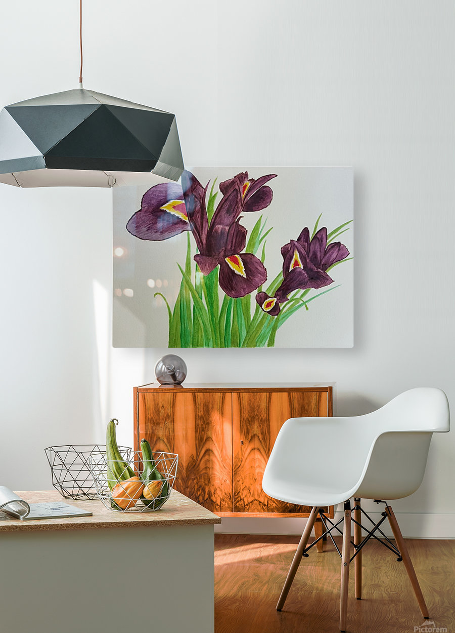 Irises  HD Metal print with Floating Frame on Back
