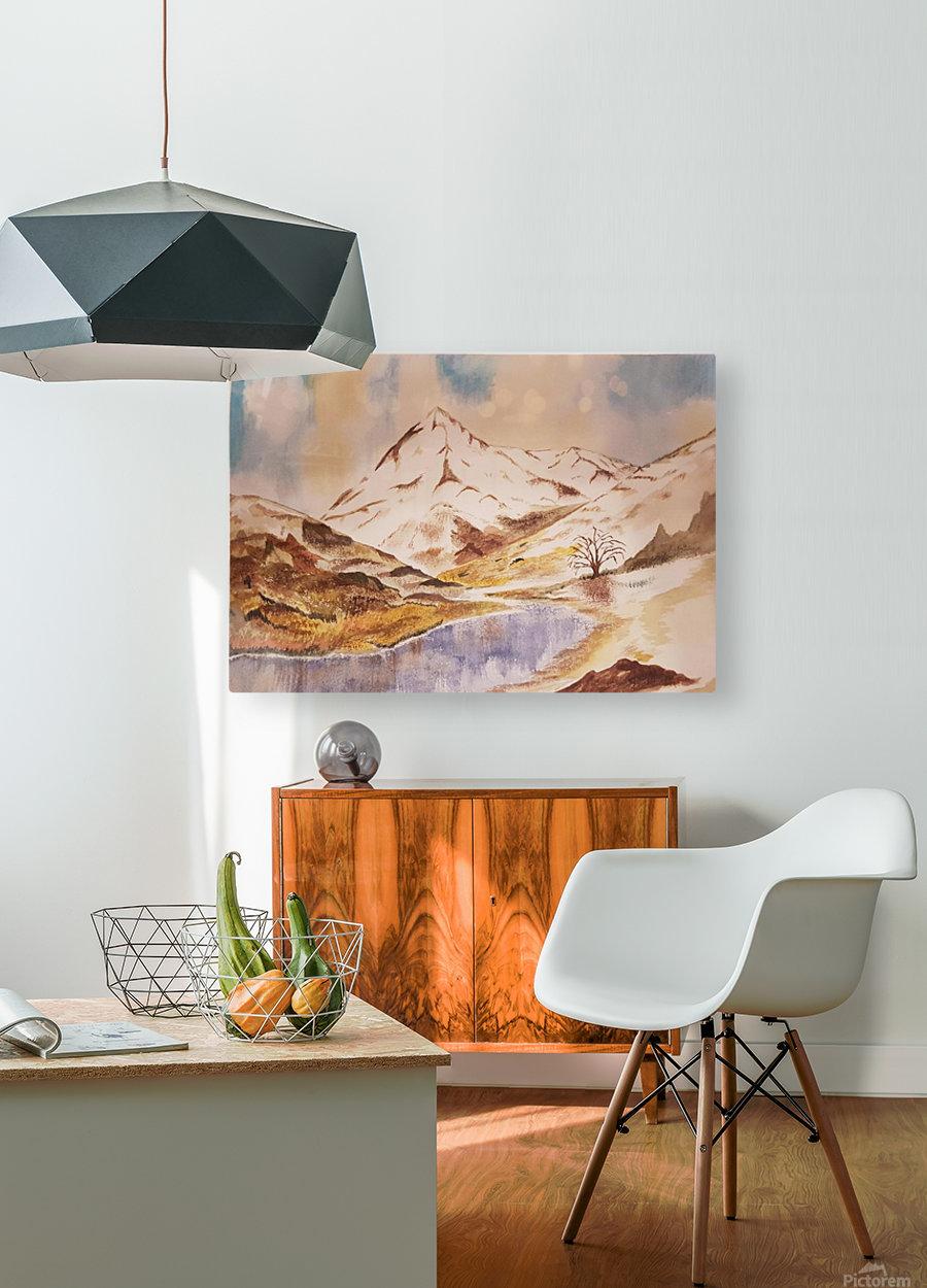 Ladakh Stream  HD Metal print with Floating Frame on Back
