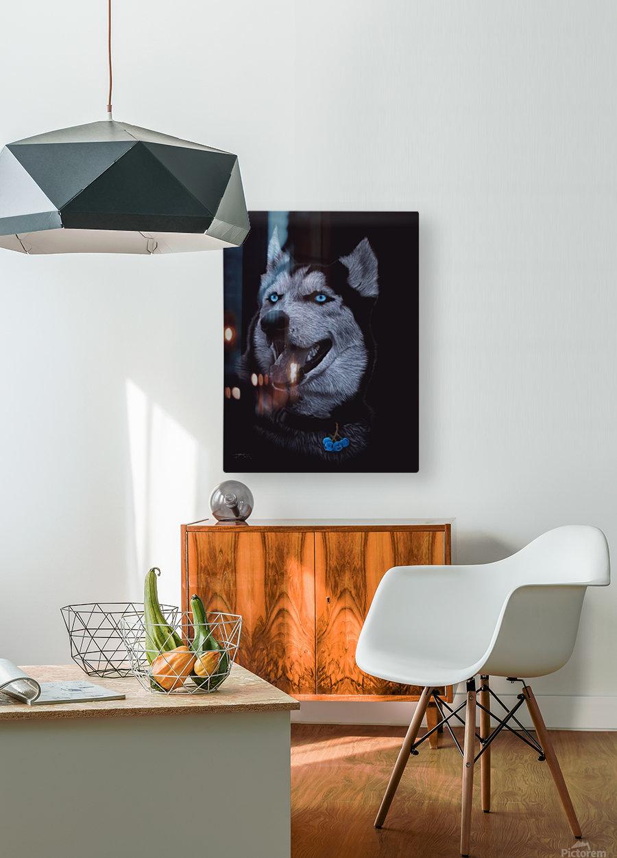 HUSKY_COLOR PENCIL_65.50X80.50  HD Metal print with Floating Frame on Back
