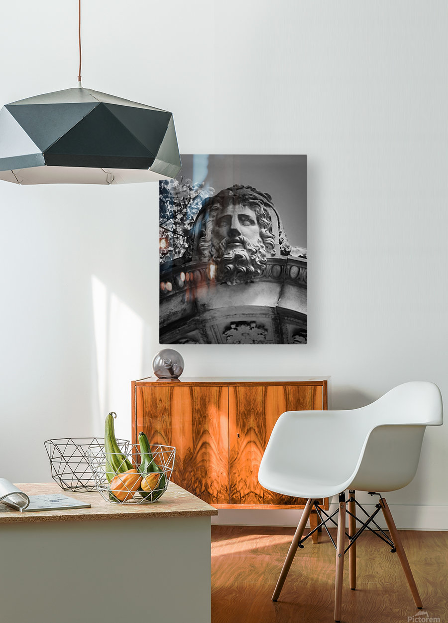 Sleeping Zeus  HD Metal print with Floating Frame on Back