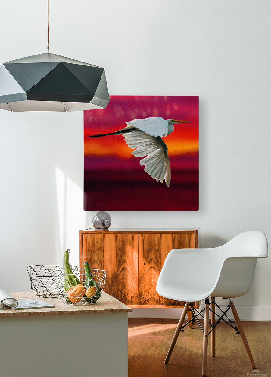 Egret in sunset  HD Metal print with Floating Frame on Back