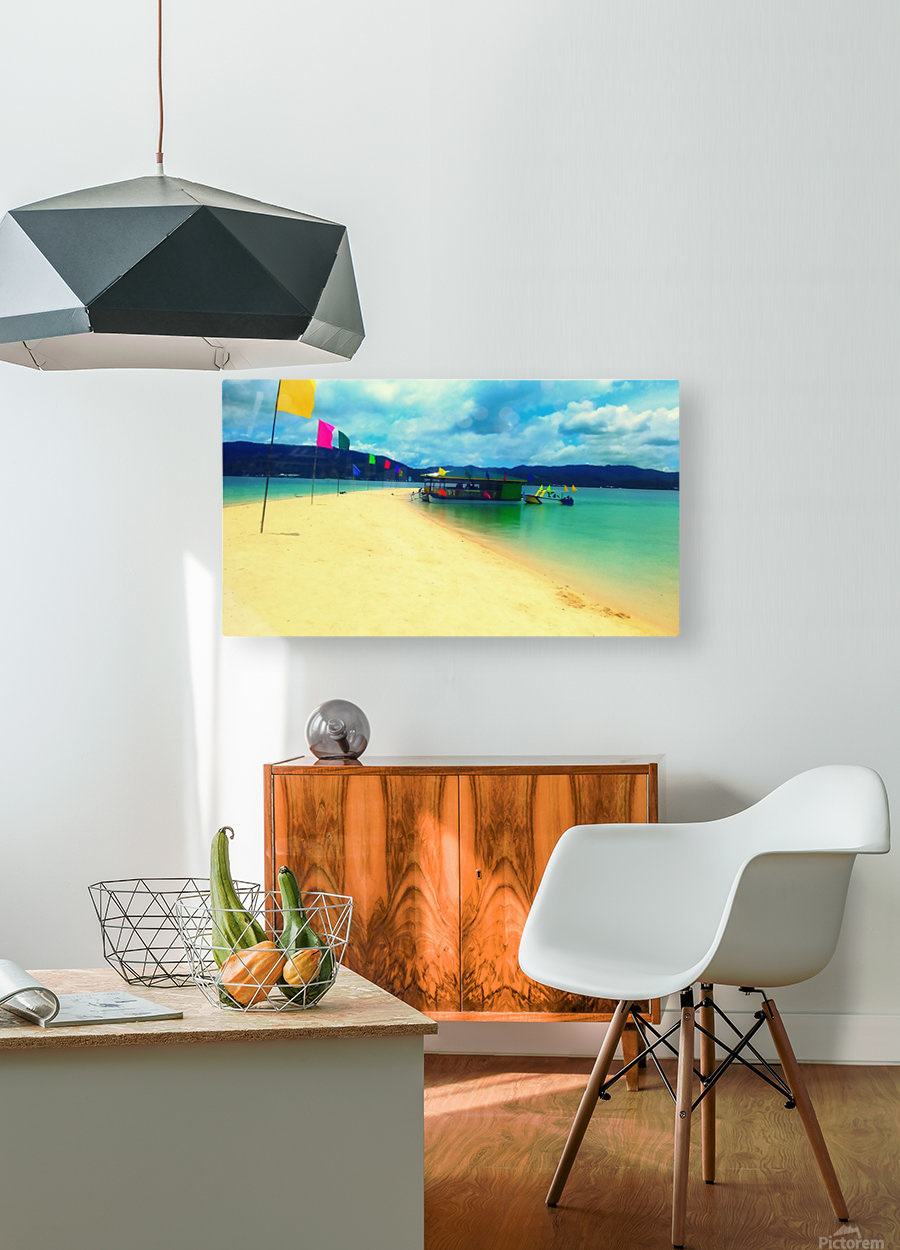 Sandbar  HD Metal print with Floating Frame on Back