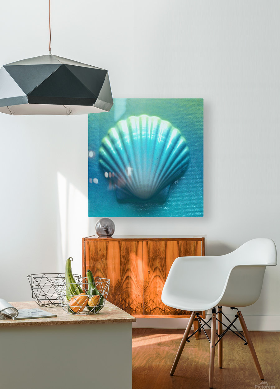 Blue Shell  HD Metal print with Floating Frame on Back