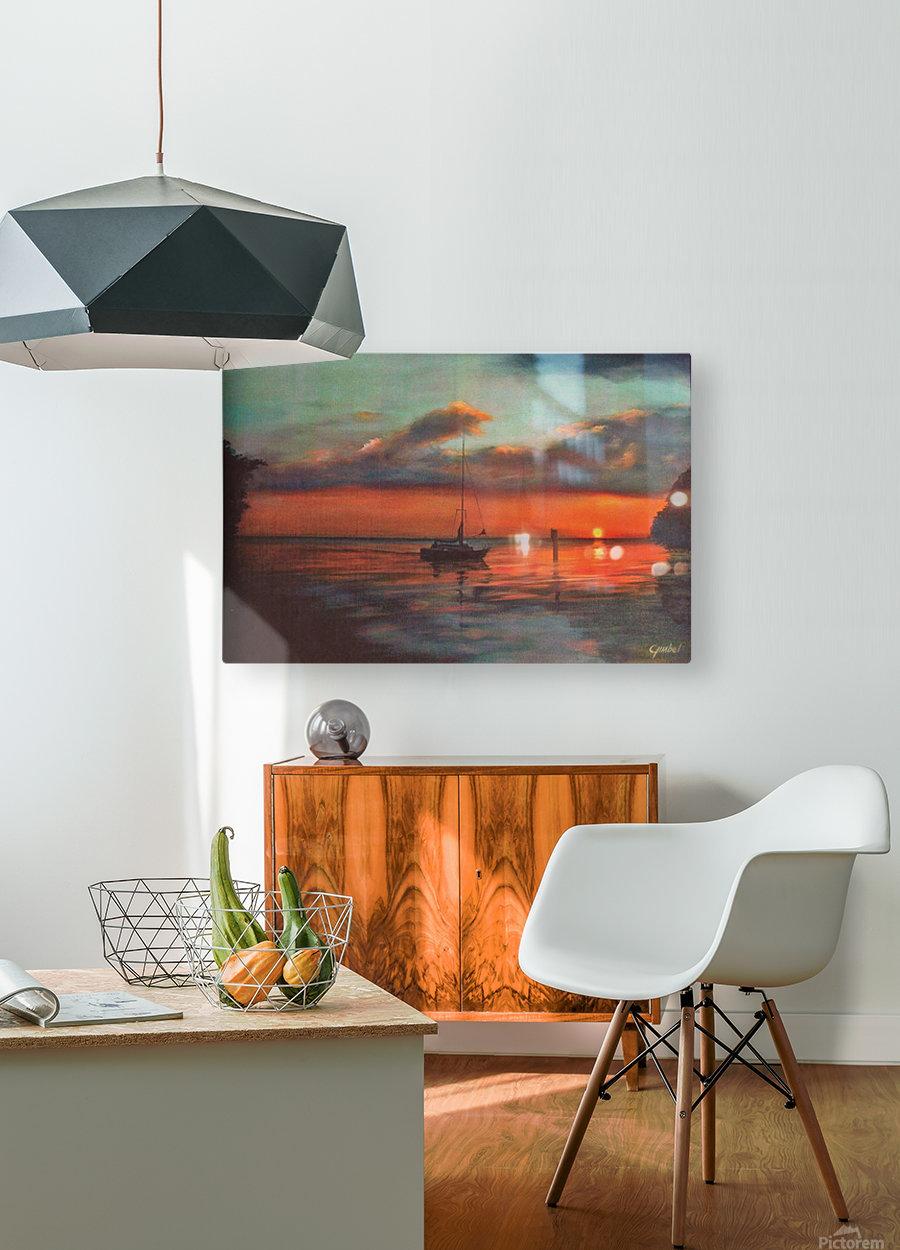 alligator creek  HD Metal print with Floating Frame on Back