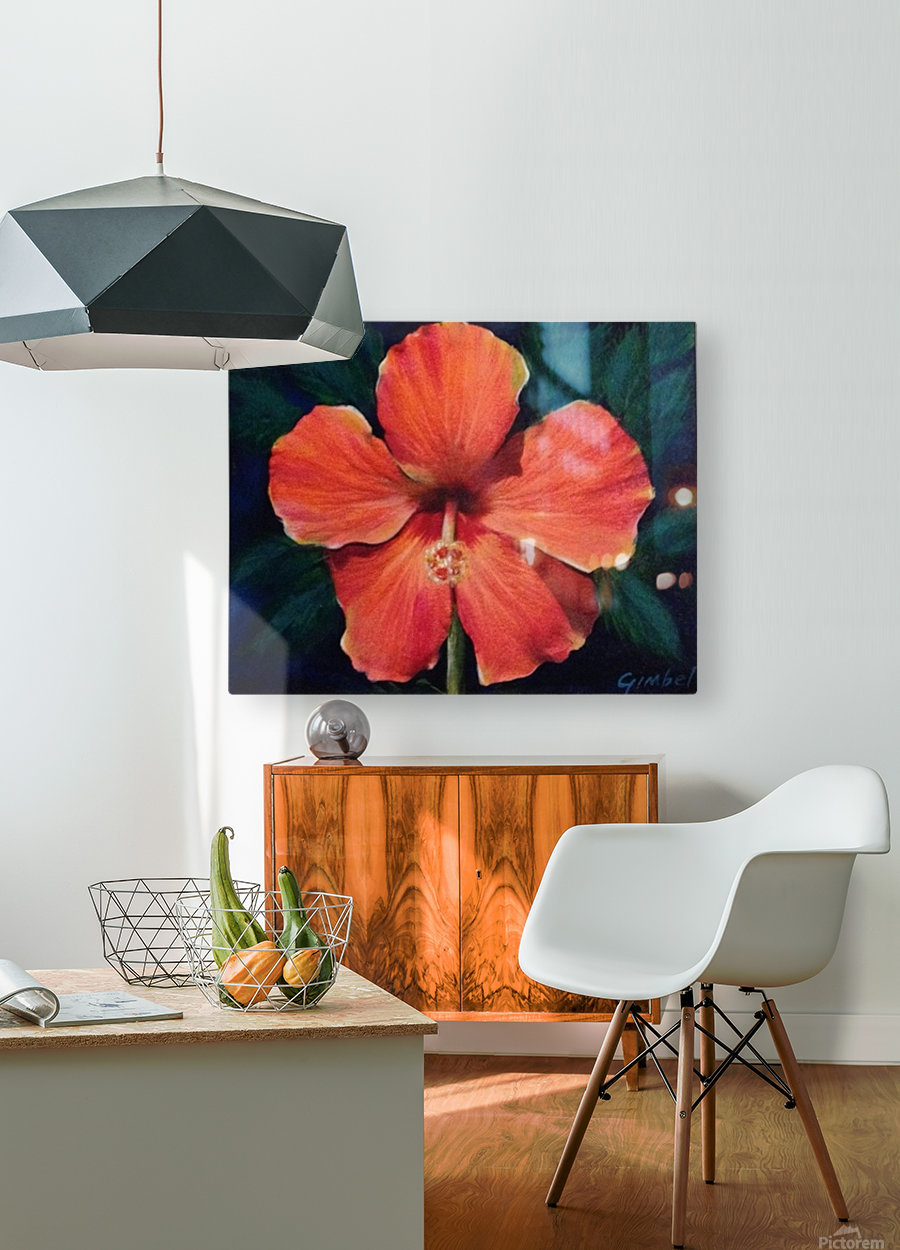 Hibiscus  HD Metal print with Floating Frame on Back