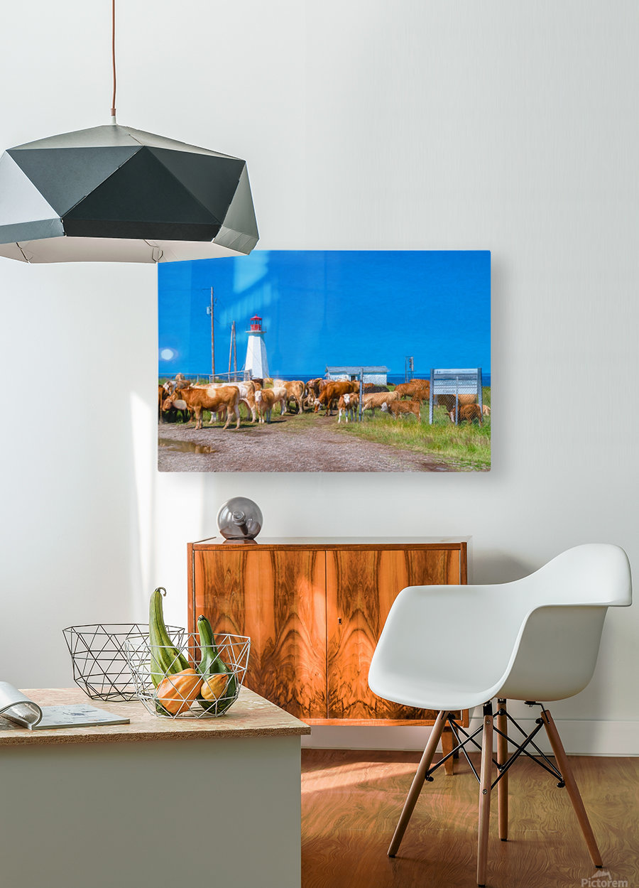 New Occupants  HD Metal print with Floating Frame on Back