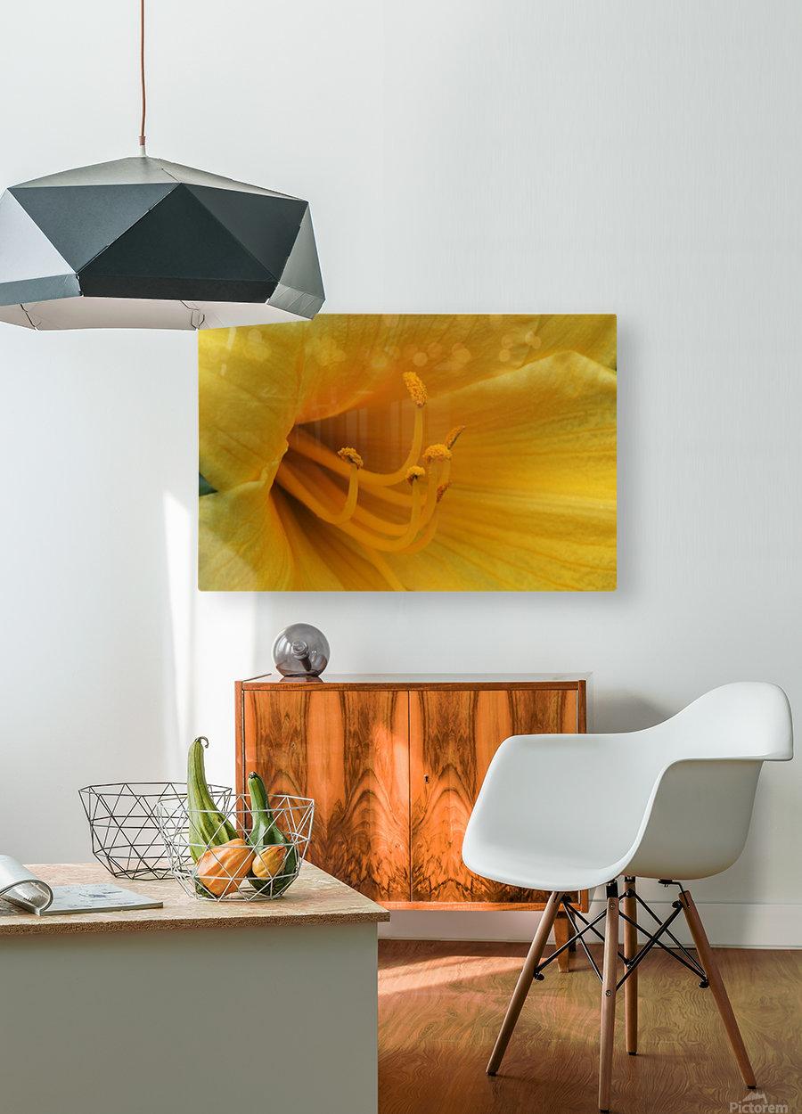 Pistil  HD Metal print with Floating Frame on Back